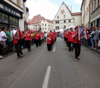 Sachsen-Anhalt-Tag Eisleben